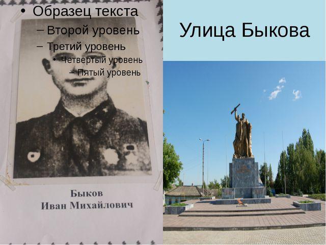 Улица Быкова