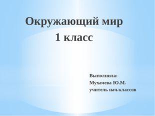 Окружающий мир 1 класс Выполнила: Мухачева Ю.М. учитель нач.классов
