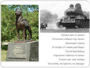 Связки мин и гранат Относили собаки под танки. Защищая страну И солдат от на