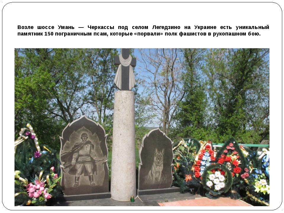 Возле шоссе Умань — Черкассы под селом Легедзино на Украине есть уникальный...