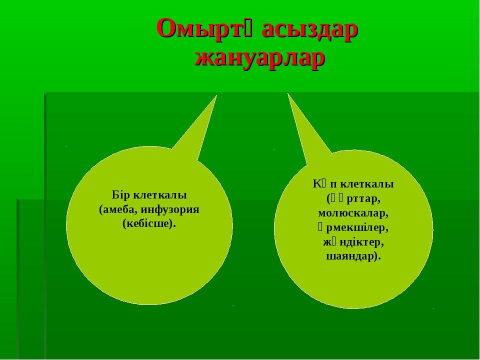 Омыртқасыздар жануарлар Бір клеткалы (амеба, инфузория (кебісше). Көп клетка...