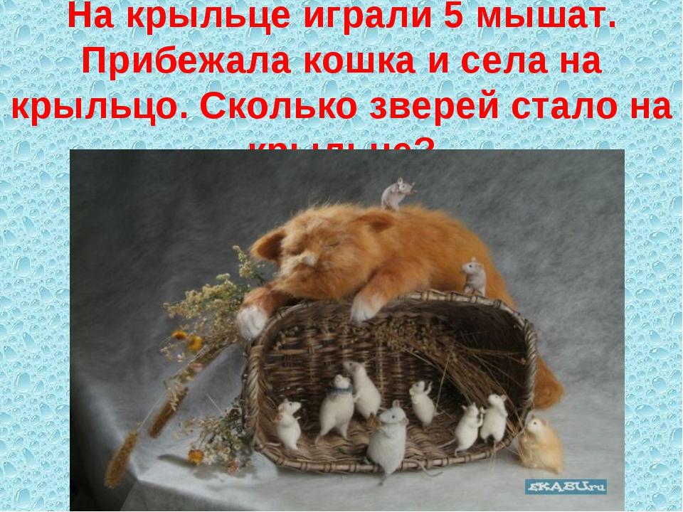 На крыльце играли 5 мышат. Прибежала кошка и села на крыльцо. Сколько зверей...