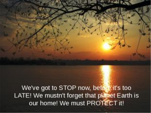 We've got to STOP now, before it's too LATE! We mustn't forget that planet Ea