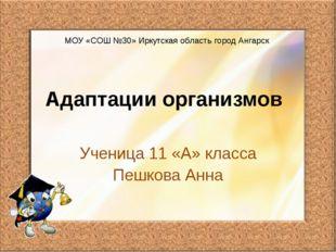 Адаптации организмов Ученица 11 «А» класса Пешкова Анна МОУ «СОШ №30» Иркутск