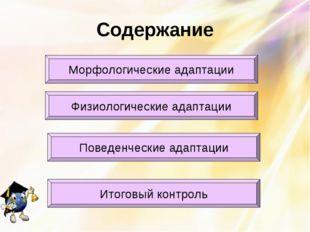 Содержание Морфологические адаптации Физиологические адаптации Итоговый контр
