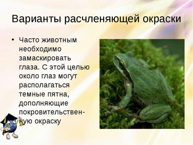 Варианты расчленяющей окраски Часто животным необходимо замаскировать глаза....