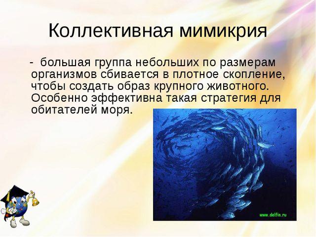 Коллективная мимикрия - большая группа небольших по размерам организмов сбива...