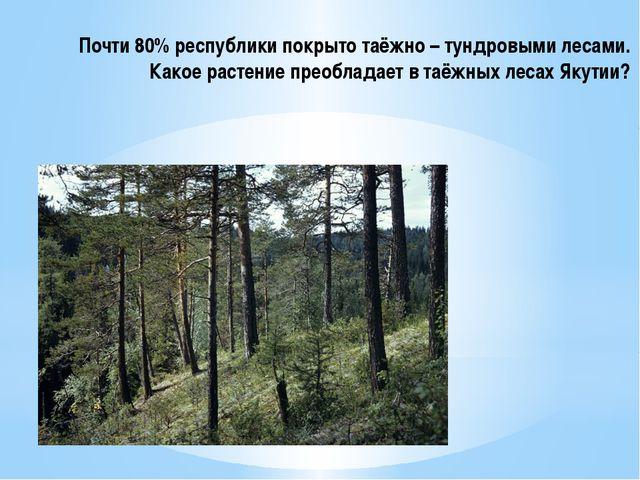 Почти 80% республики покрыто таёжно – тундровыми лесами. Какое растение преоб...