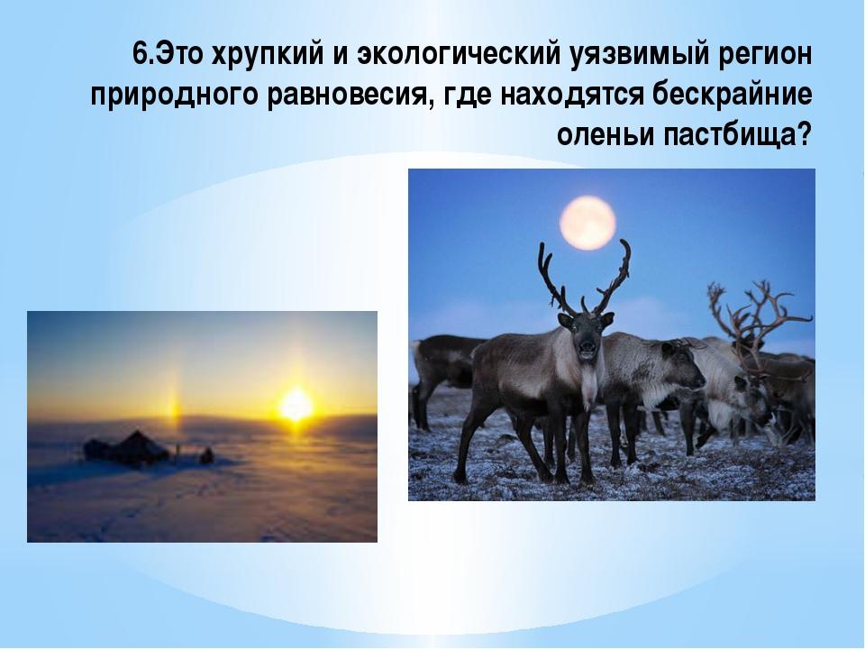 6.Это хрупкий и экологический уязвимый регион природного равновесия, где нахо...