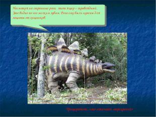 Несмотря на страшные рога, этот ящер – травоядный. Это видно по его мелким зу