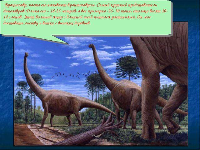 Брахиозавр, часто его называют бронтозавром. Самый крупный представитель дин...
