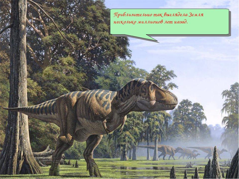 Приблизительно так выглядела Земля несколько миллионов лет назад.