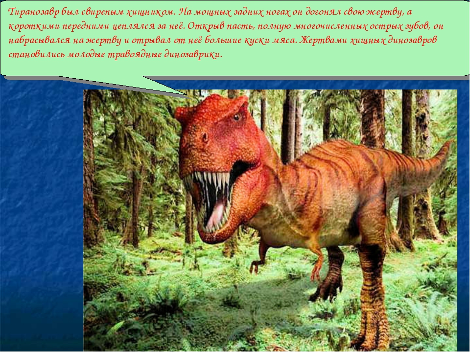 Тиранозавр был свирепым хищником. На мощных задних ногах он догонял свою жер...