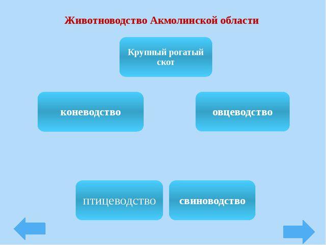 Животноводство Акмолинской области