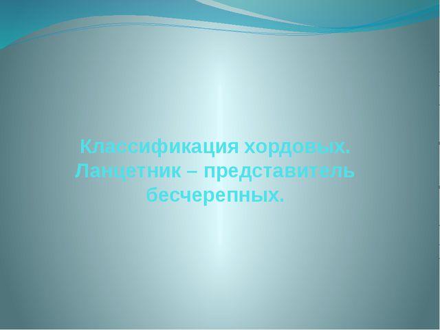 Классификация хордовых. Ланцетник – представитель бесчерепных.