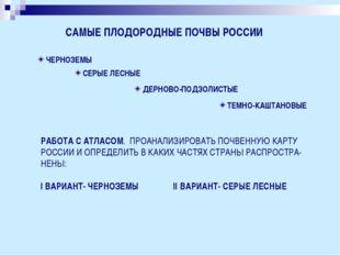 САМЫЕ ПЛОДОРОДНЫЕ ПОЧВЫ РОССИИ ЧЕРНОЗЕМЫ СЕРЫЕ ЛЕСНЫЕ ДЕРНОВО-ПОДЗОЛИСТЫЕ ТЕМ