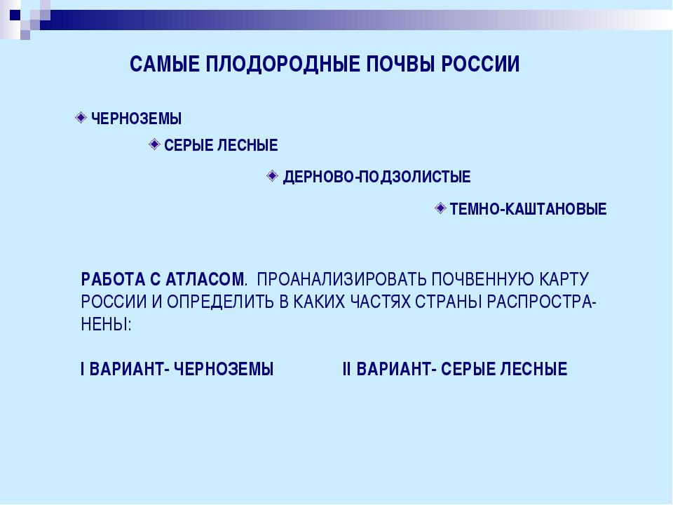 САМЫЕ ПЛОДОРОДНЫЕ ПОЧВЫ РОССИИ ЧЕРНОЗЕМЫ СЕРЫЕ ЛЕСНЫЕ ДЕРНОВО-ПОДЗОЛИСТЫЕ ТЕМ...