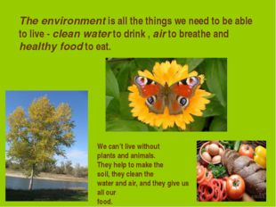 The environment is all the things we need to be able to live - clean water to