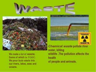 Chemical waste pollute river water, killing wildlife .The pollution affects t