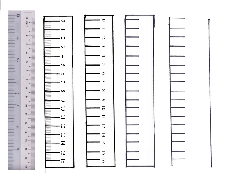 Шкала делений картинки