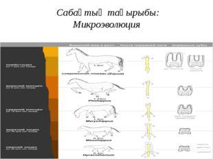 Сабақтың тақырыбы: Микроэволюция