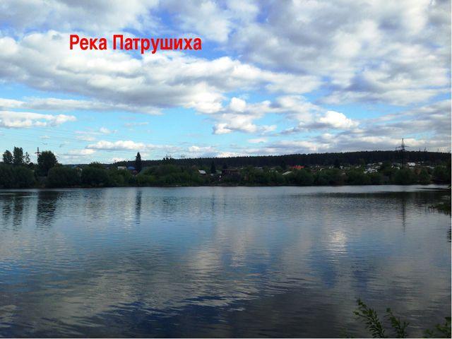 Река Патрушиха