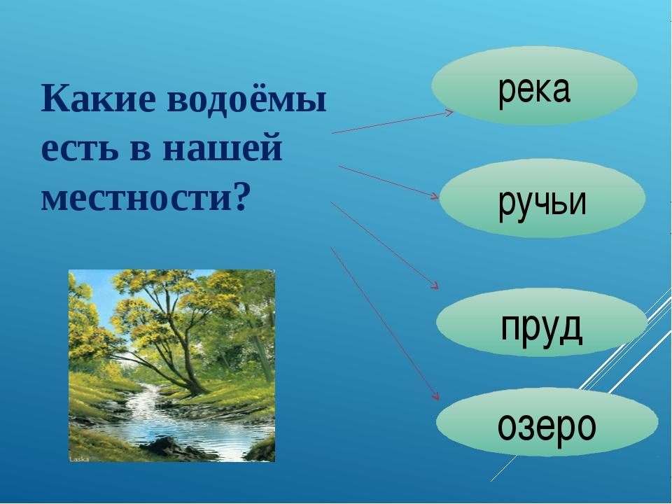 Какие водоёмы есть в нашей местности? река ручьи пруд озеро