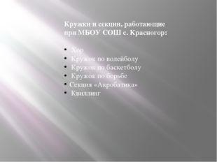 Кружки и секции, работающие при МБОУ СОШ с. Красногор: Хор Кружок по волейбол
