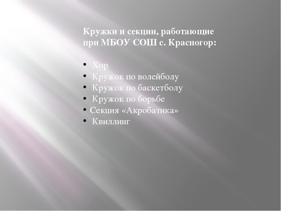 Кружки и секции, работающие при МБОУ СОШ с. Красногор: Хор Кружок по волейбол...
