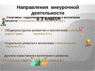 Спортивно- оздоровительное развитие и воспитание личности (Спортивная секция