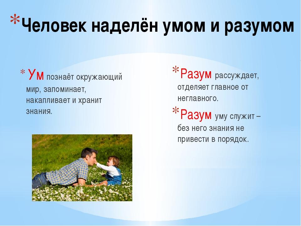 отец с сыном играют на траве