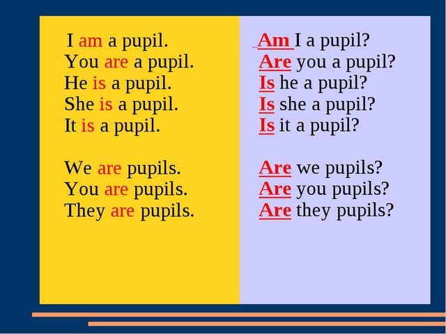 I am a pupil. You are a pupil. He is a pupil. She is a pupil. It is a pupil....