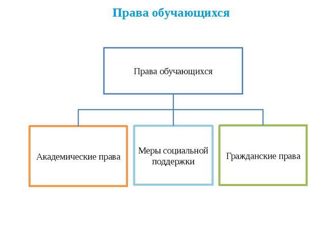 Права обучающихся Права обучающихся Меры социальной поддержки Академические п...