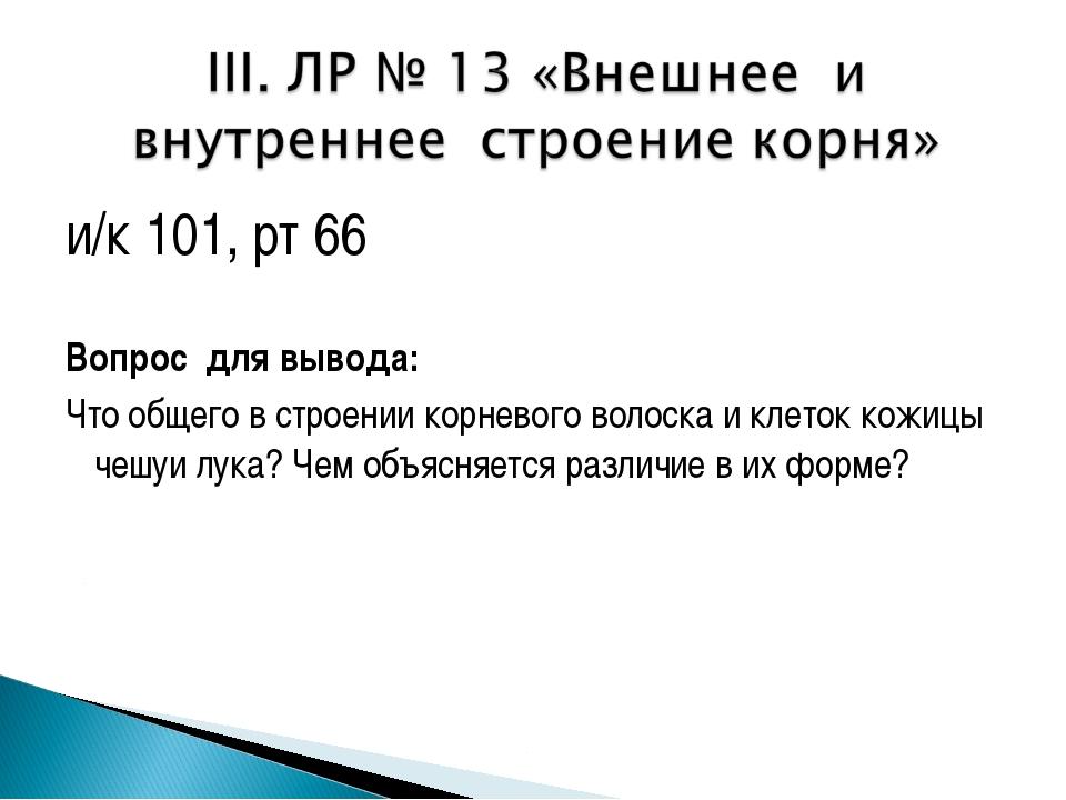 и/к 101, рт 66 Вопрос для вывода: Что общего в строении корневого волоска и к...