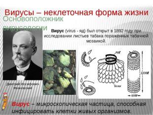 Вирусы – неклеточная форма жизни Вирус (virus - яд) был открыт в 1892 году пр