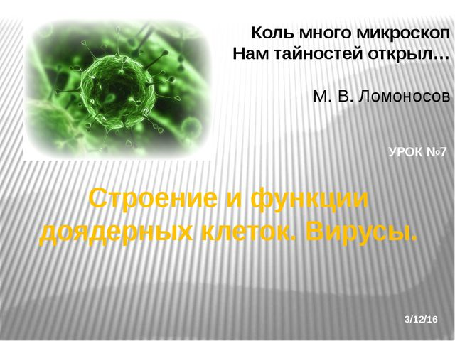 Строение и функции доядерных клеток. Вирусы. УРОК №7 Коль много микроскоп Нам...