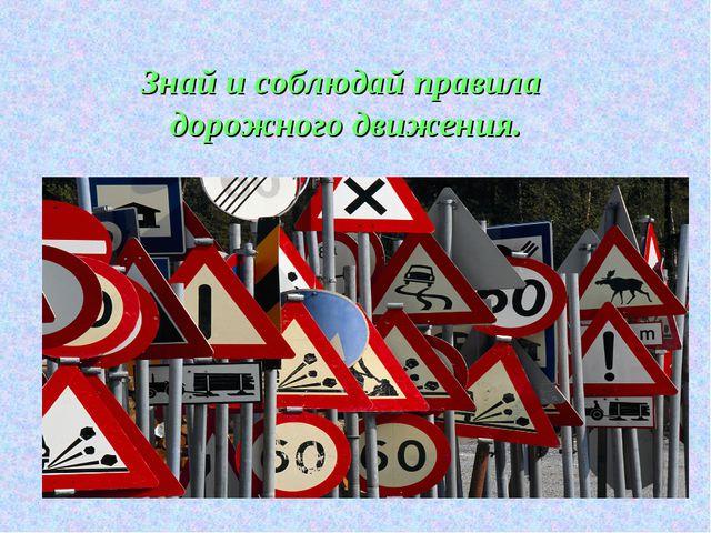 Знай и соблюдай правила дорожного движения.