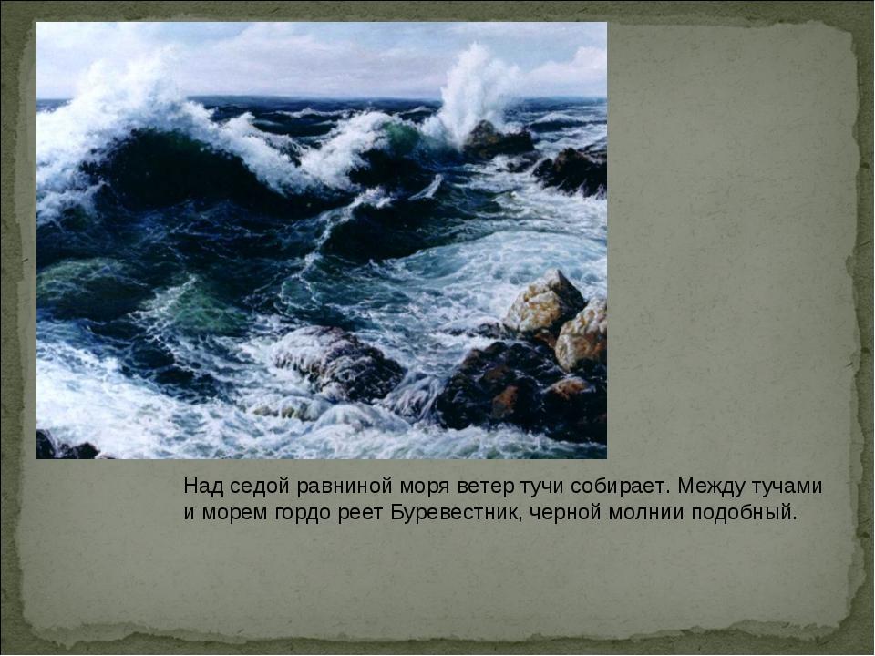 Над седой равниной моря ветер тучи собирает. Между тучами и морем гордо реет...