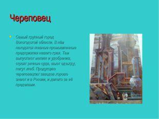 Череповец Самый крупный город Вологодской области. В нём находятся главные пр