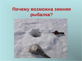 Почему возможна зимняя рыбалка?