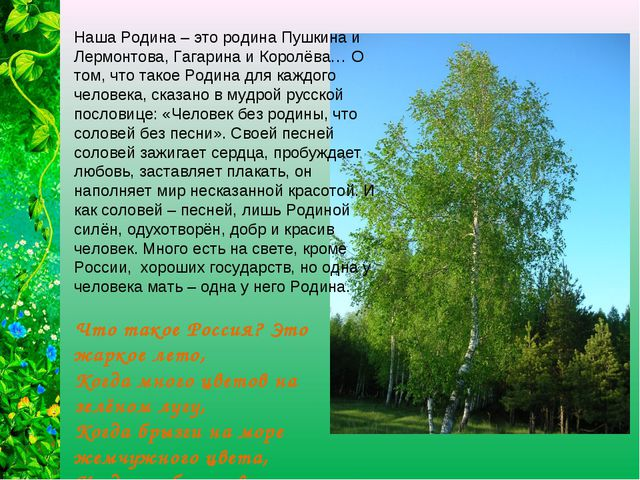 Наша Родина – это родина Пушкина и Лермонтова, Гагарина и Королёва… О том, чт...