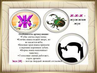 Ж-Ж-Ж - жужжит жук Особенности артикуляции: Губы слегка округлены; Кончик язы