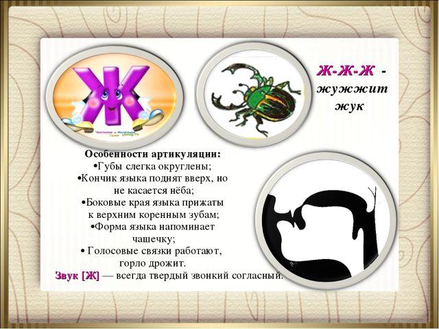 Ж-Ж-Ж - жужжит жук Особенности артикуляции: Губы слегка округлены; Кончик язы...