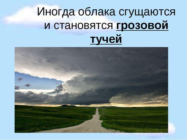 Иногда облака сгущаются и становятся грозовой тучей