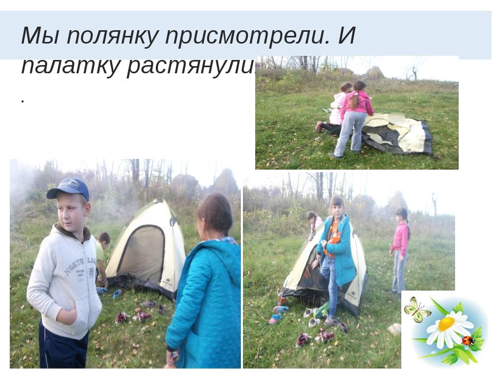 Мы полянку присмотрели. И палатку растянули. . *