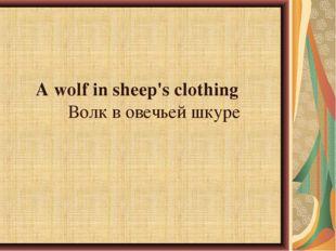A wolf in sheep's clothingВолк в овечьей шкуре