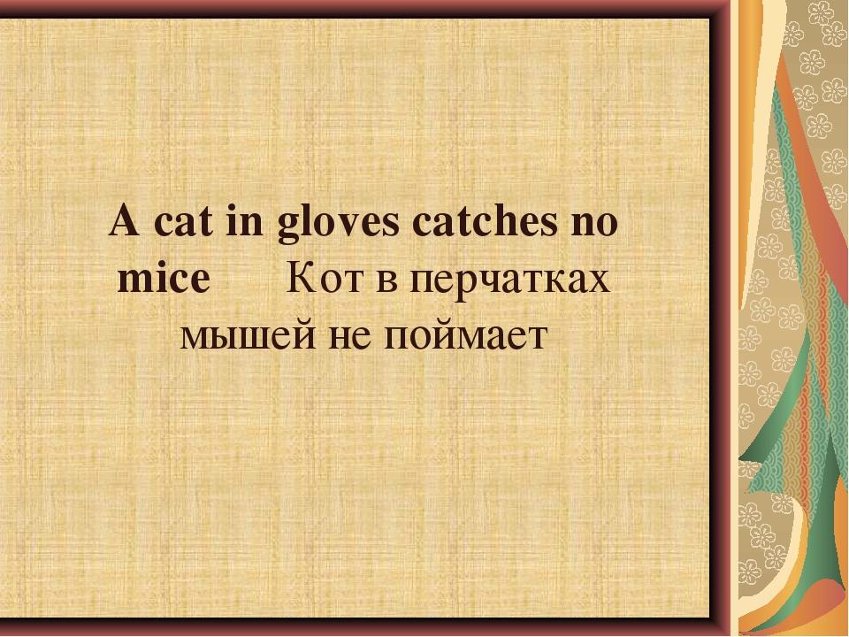 A cat in gloves catches no miceКот в перчатках мышей не поймает