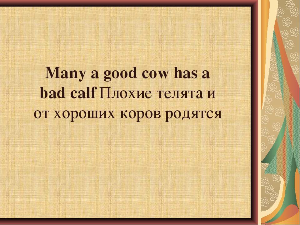 Many a good cow has a bad calfПлохие телята и от хороших коров родятся