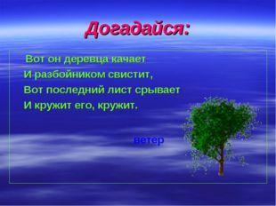 Догадайся: Вот он деревца качает И разбойником свистит, Вот последний лист ср