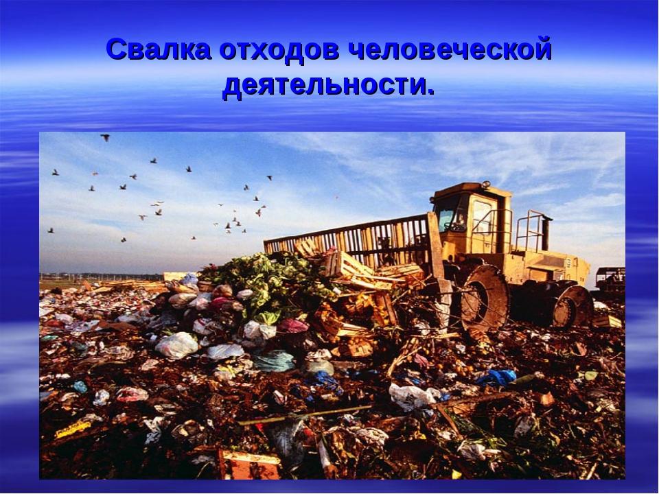 Свалка отходов человеческой деятельности.